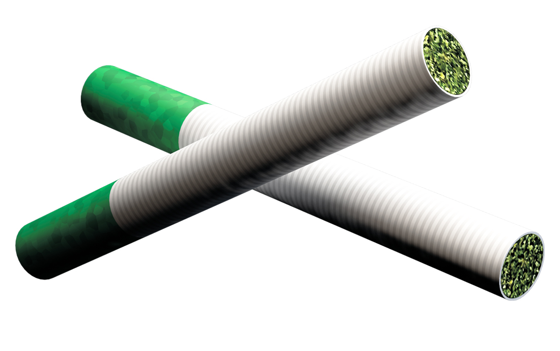 Image of two cylindrical hemp pre-roll.