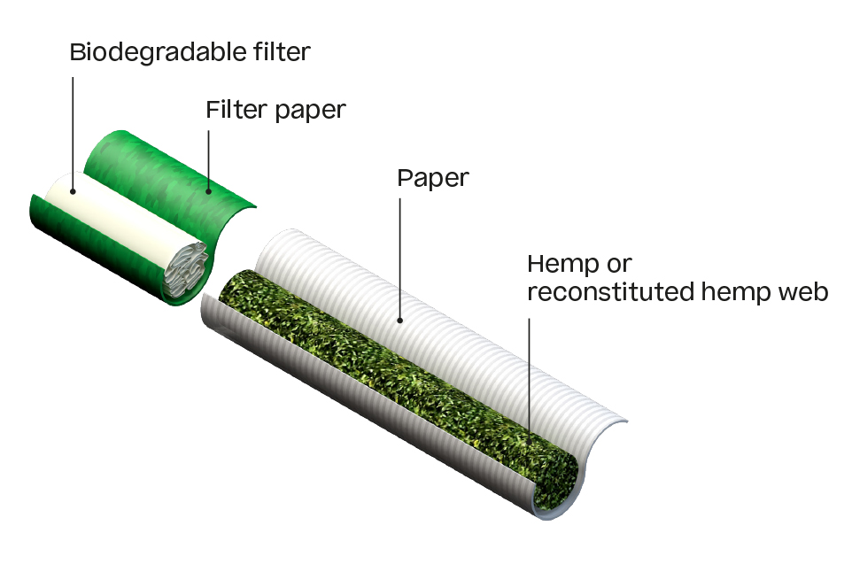 Picture of a sectional view of a hemp cigarette with filter, hemp and paper